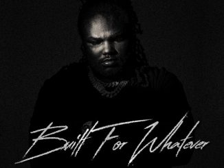 Tee Grizzley Built For Whatever Zip Download
